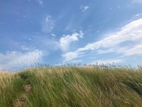 Seven Sisters Prairie@72_0019